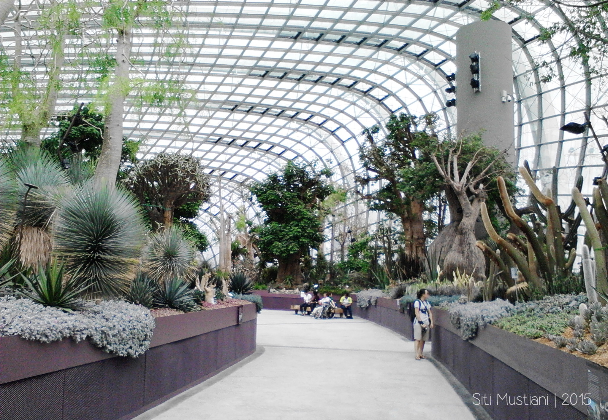 Flower Dome Garden By The Bay